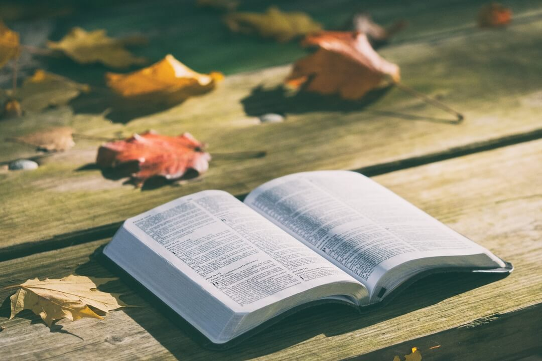 Diagonal view of an open Bible with autumn leaves around.